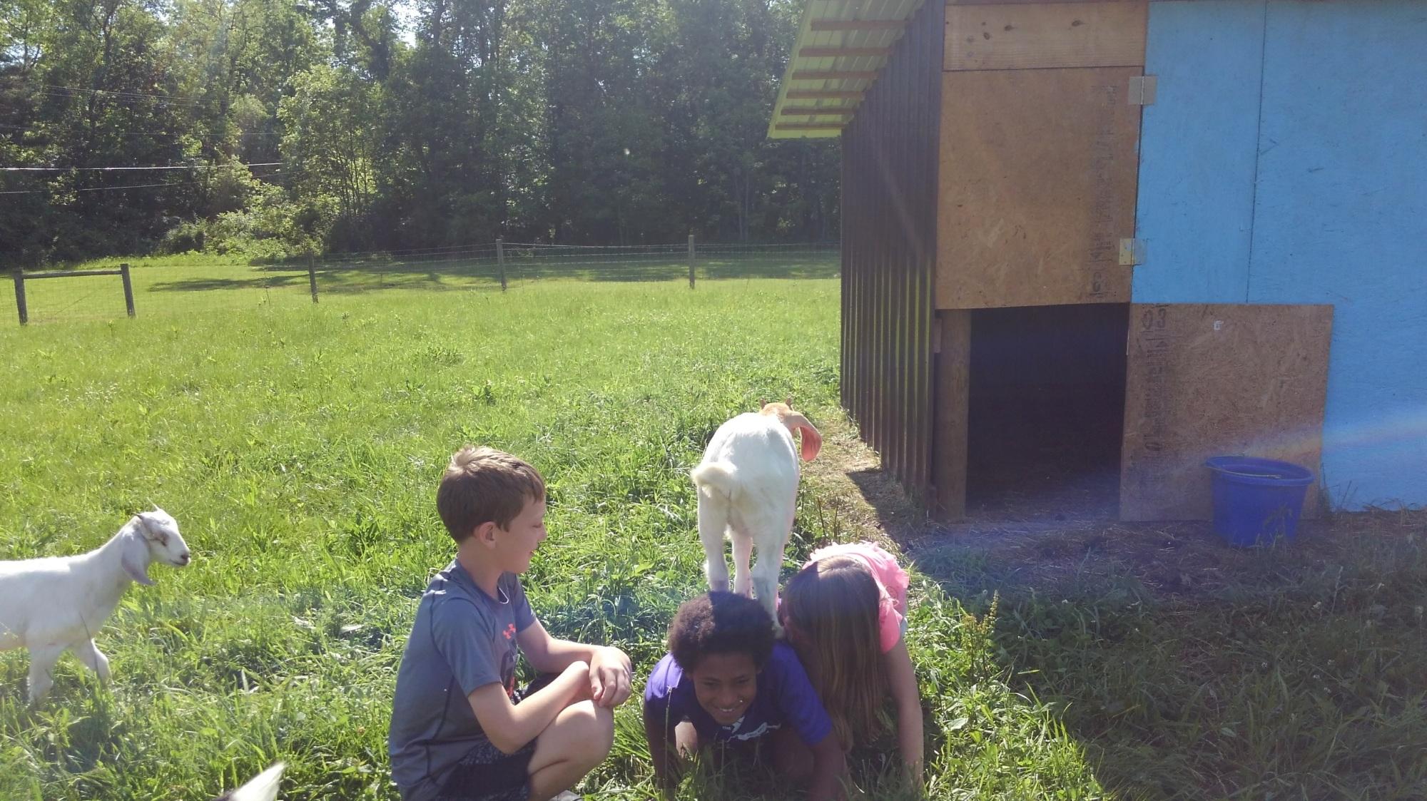 Visit – Kenyon Farm